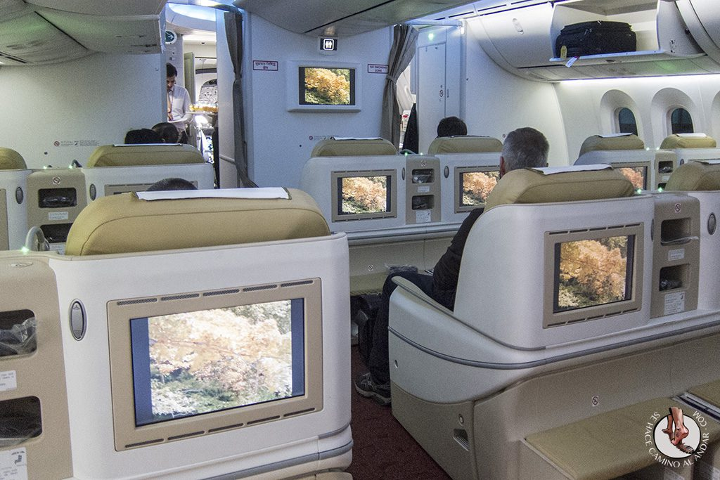 Business Class Boing 787 Air India