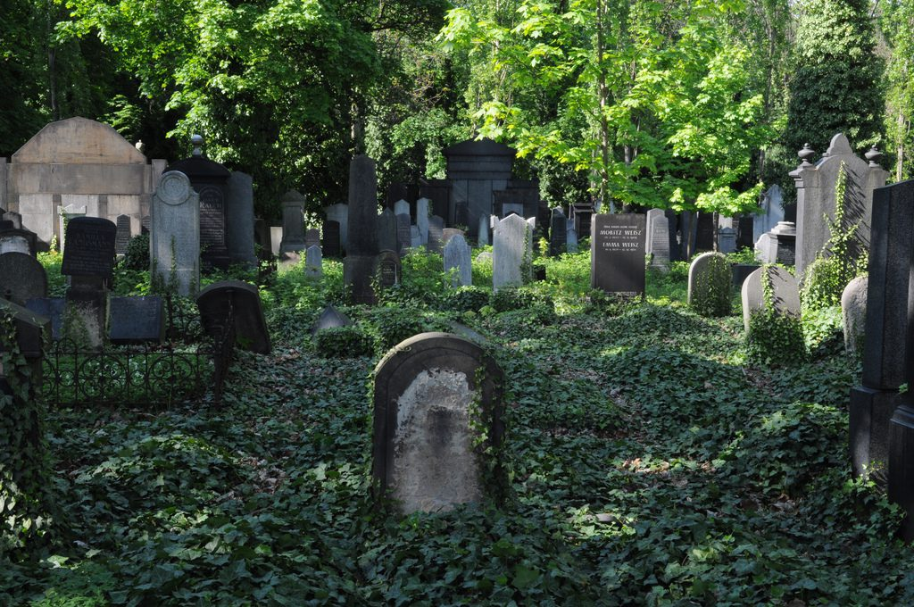 Cementerio Nuevo Judio de Praga