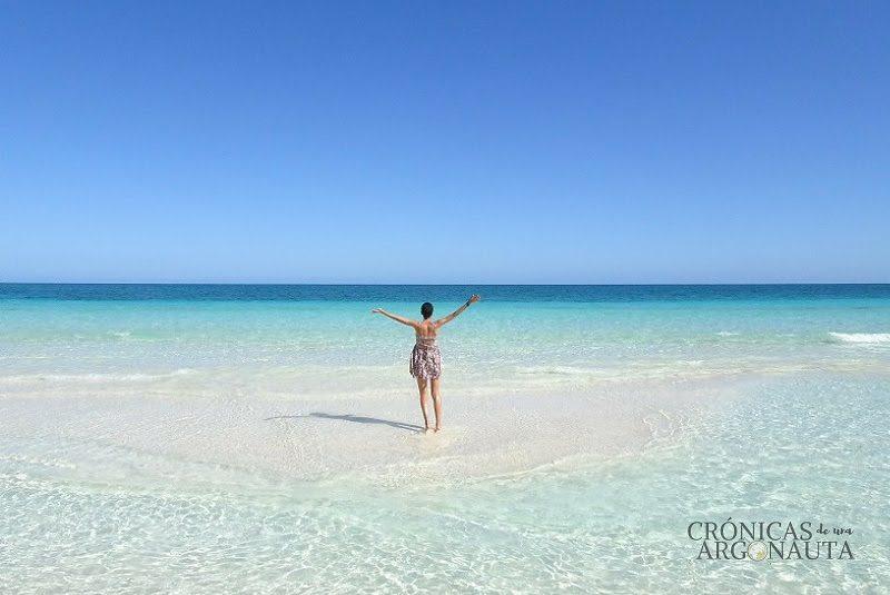 cronicas argonauta playa
