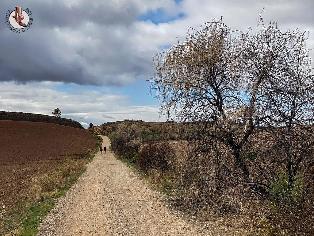 cs5 camino tierra peregrino