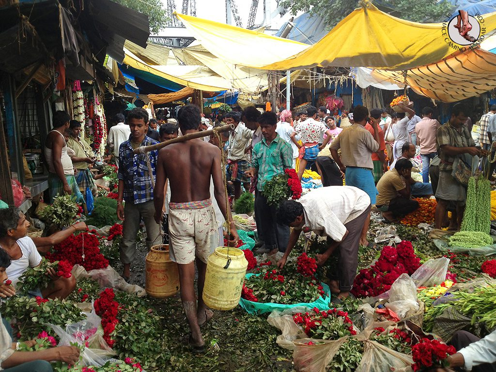 mercado flores calculta agua