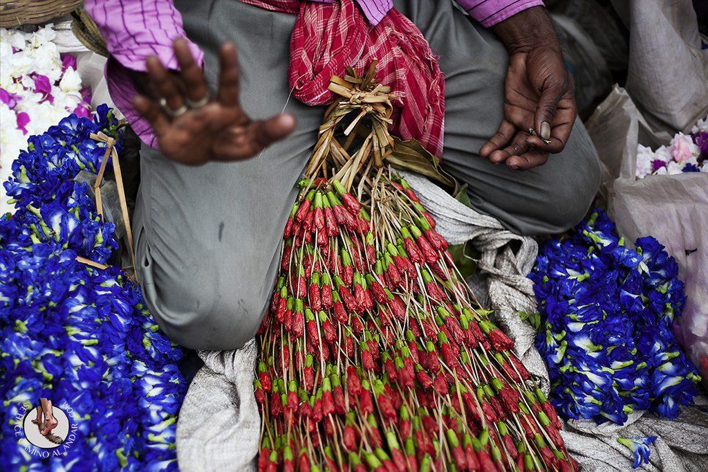 mercado flores calculta namaste