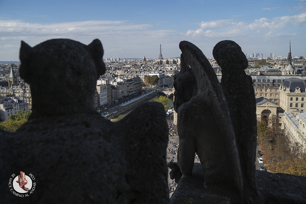 miradores de paris notredame gargolas torre eiffel