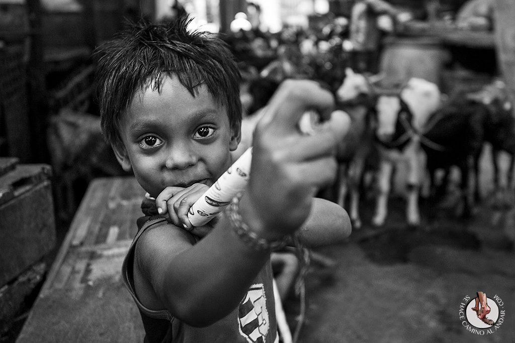 Niño pastor mercado del Calcuta