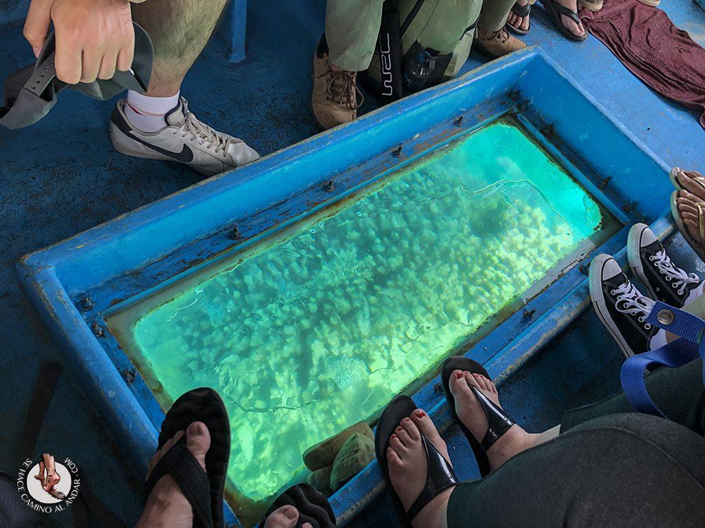 organizar viaje a jordania mar rojo barco cristal
