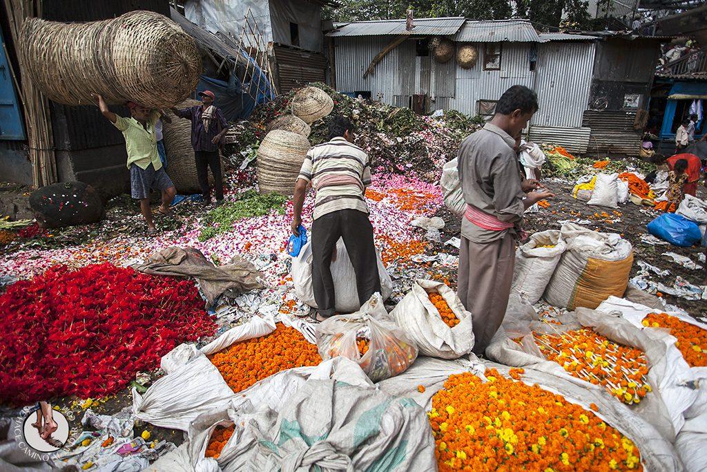 punto de reciclaje mercado de las flores Calcuta