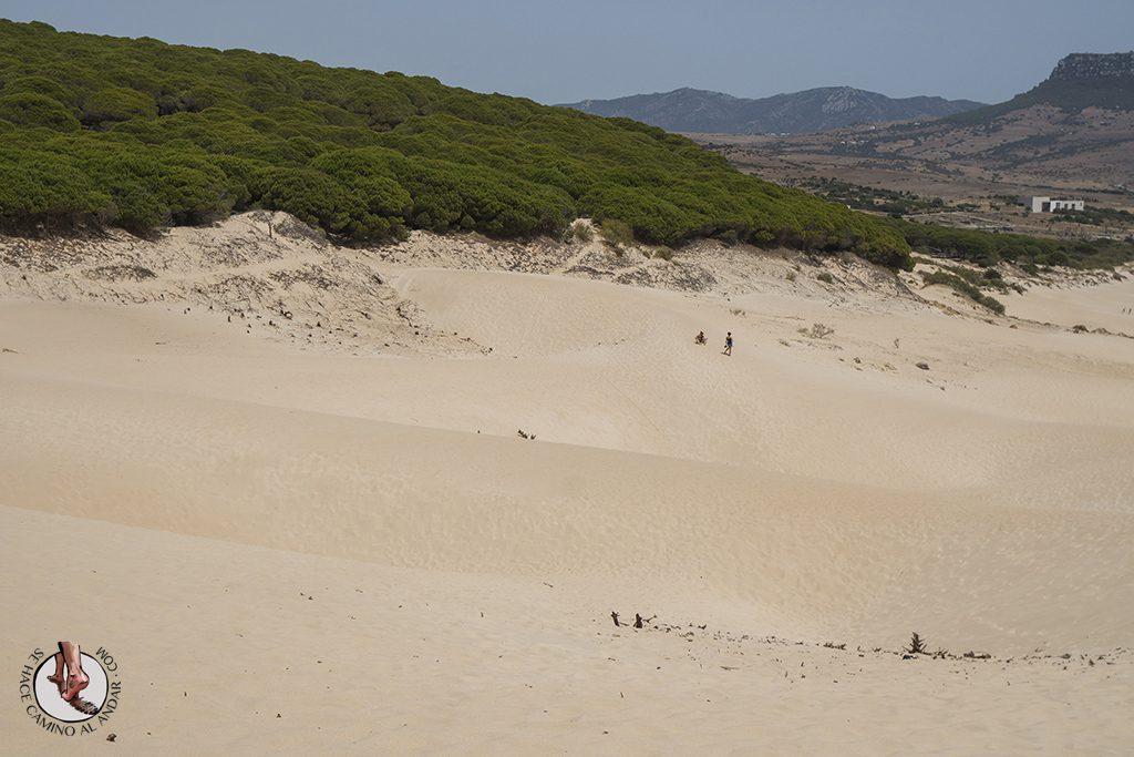 que ver en Tarifa playa de bolonia dunas