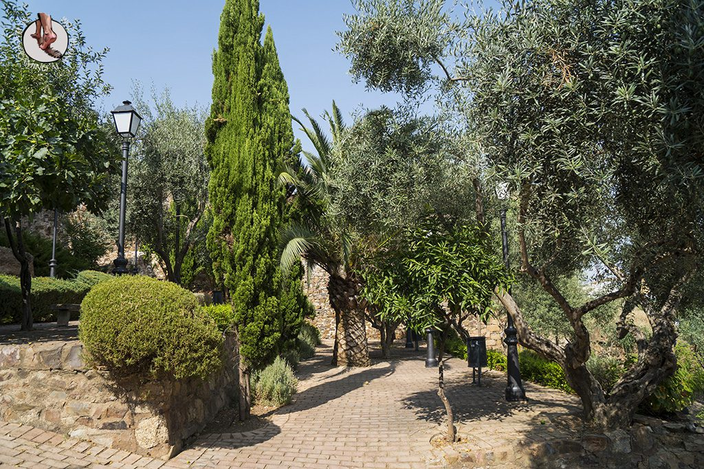 que ver en caceres olivar juderia