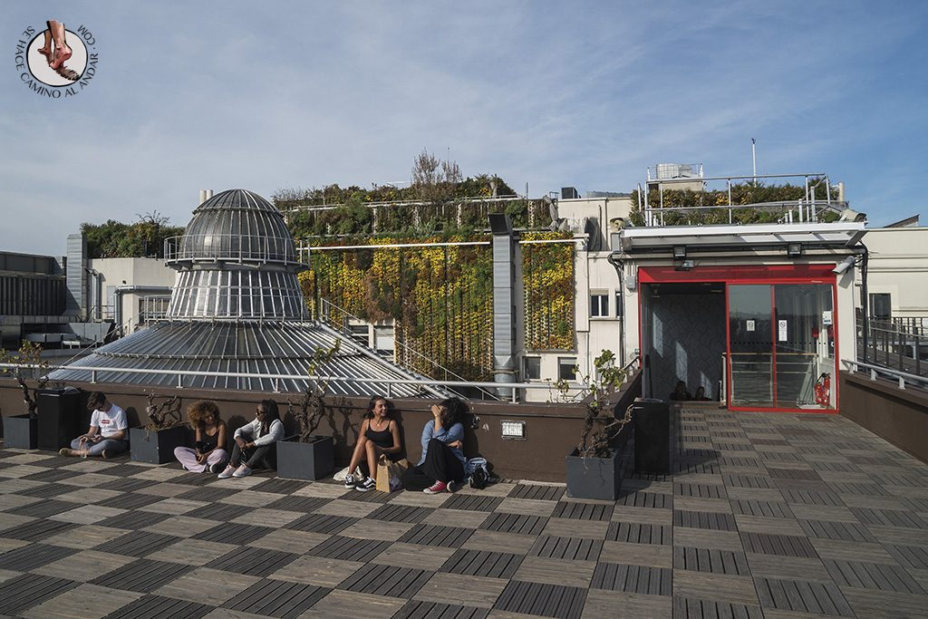 que ver en paris Galerias Lafayette terraza