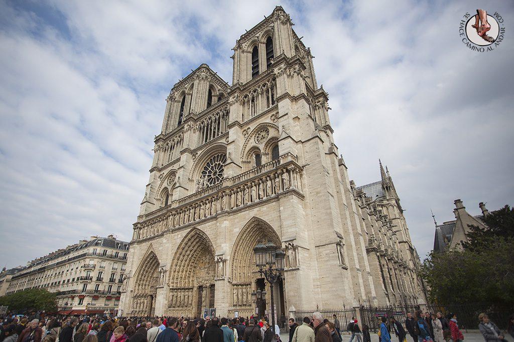 que ver en paris catedral notre dame