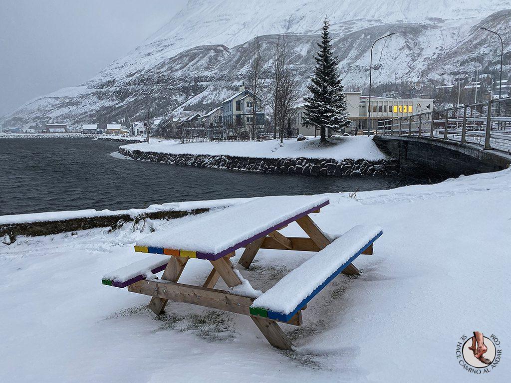 ring road islandia dia 4-7 Seydisfjordur banco