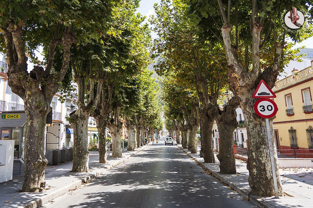 ubrique-calles