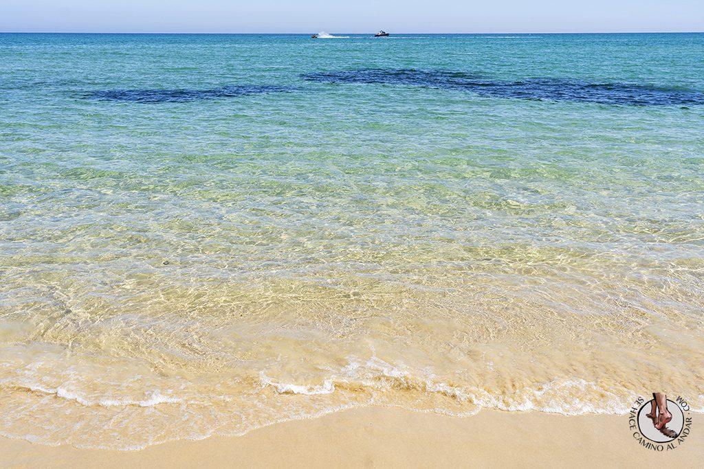 visitar algarve Praia Barreta Ilha Deserta agua