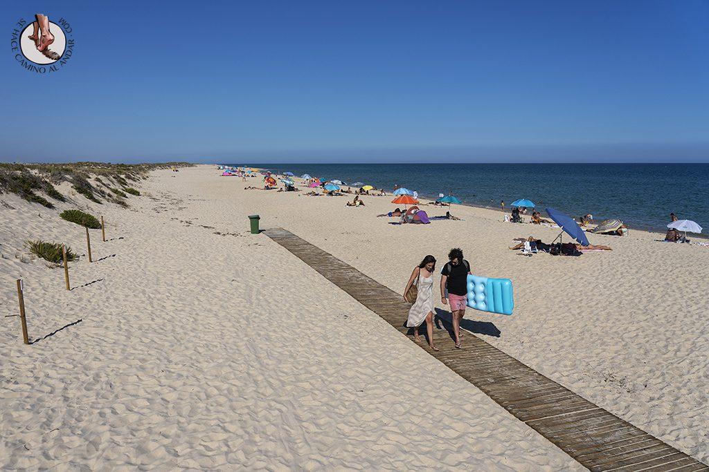 visitar algarve praia culatra pasarela