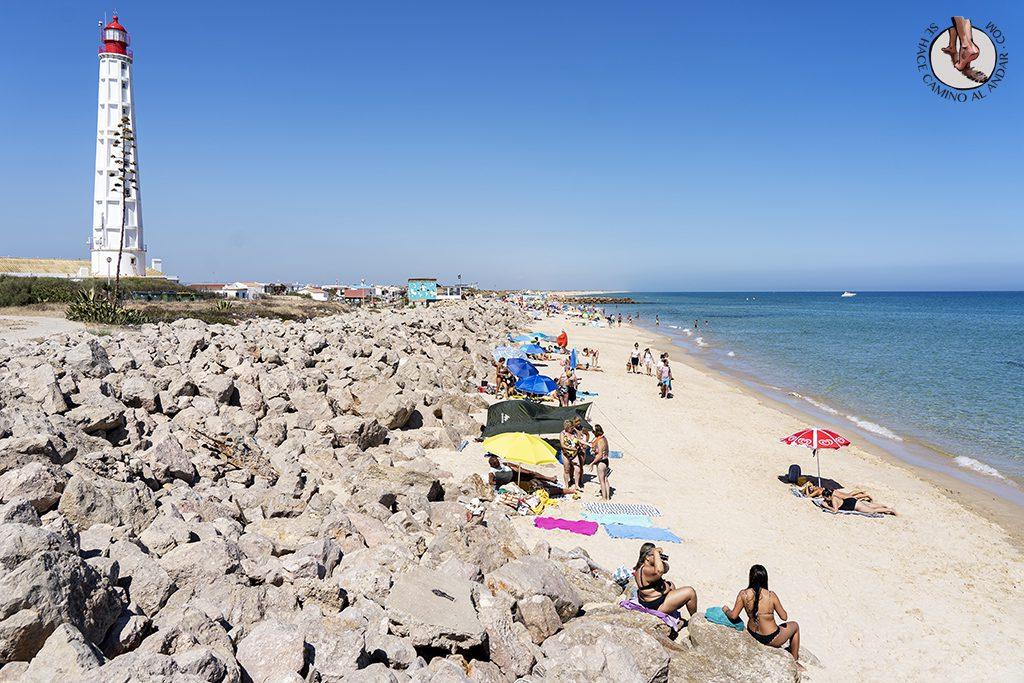 visitar algarve praia farol