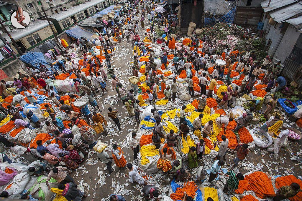 Vista aérea mercado de las flores Calcuta